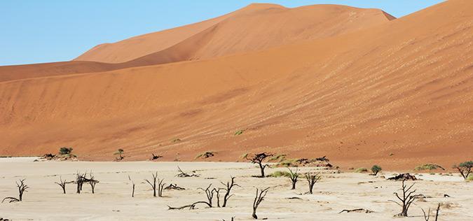 דיונות חול אדומות בנמיביה